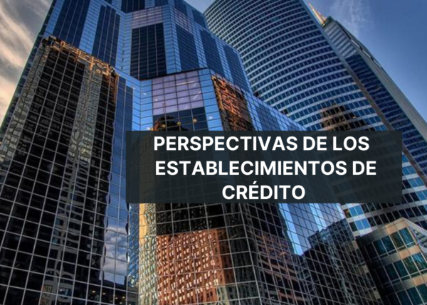 Perspectivas económicas. Establecimientos de crédito. Webinar. Youtube. Video.